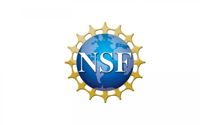NSF Small Business Innovation Research Grant Award Phase II